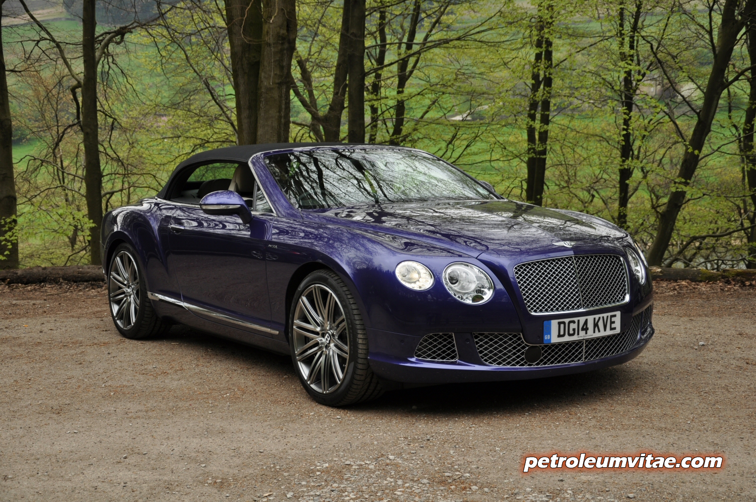 inventory sale gt used bentley continental details coupe for base