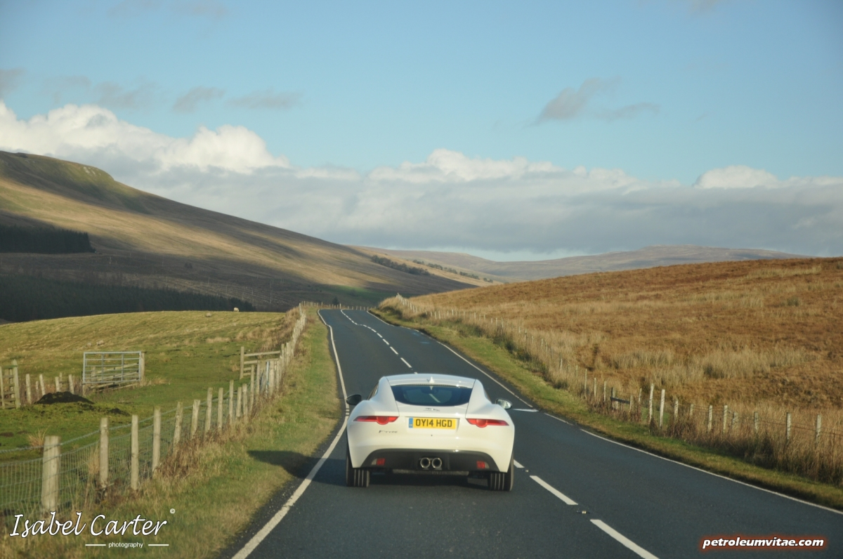 How sharp are the softest cat's claws? 2014 3-litre V6 Supercharged Petrol 340PS Jaguar F-Type Coupé – full road test review.