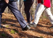 Rural parking meters walking exercise public health UK Brits article blog